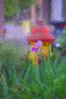 Photograph - Iris And Fire Plug by David Lane