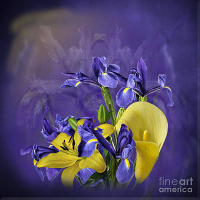 Photograph - Iris And Lilies by Shirley Mangini