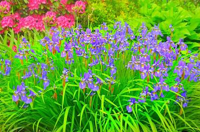 Photograph - Iris And Rhododendron by Diana Angstadt