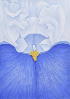Painting - Iris by Andrea Angulo