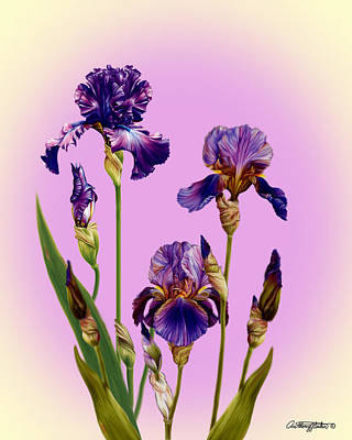 Mixed Media - Iris by Anthony Seeker