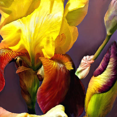 Digital Art - Iris Art by Susan Kinney