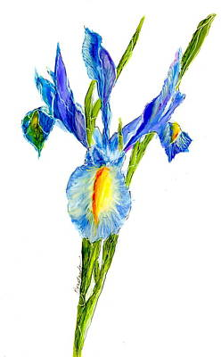 Wall Art - Painting - Iris Beauty by Alexis Bonavitacola
