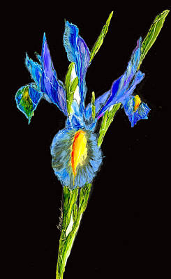 Wall Art - Painting - Iris Beauty At Midnight by Alexis Bonavitacola