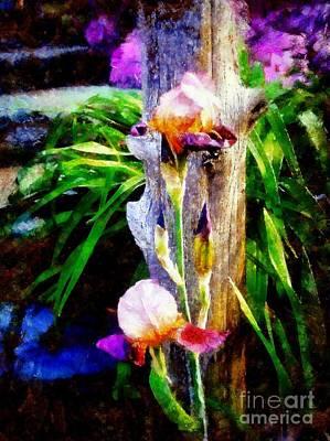 Photograph - Iris Bloom by Janine Riley