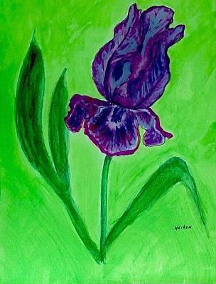 Iris Bloom Art Print by Marsha Heiken