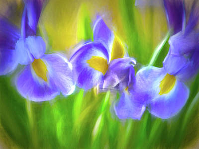 Iris Delight Art Print by Sharon Lisa Clarke