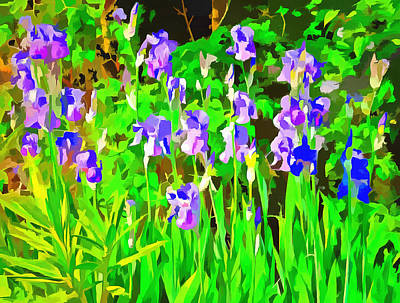 Photograph - Iris Drifts Into Pop Art by Dorothy Berry-Lound