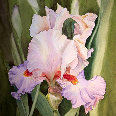 Valentine Gift Ideas Painting - Iris Flower by Irina Sztukowski