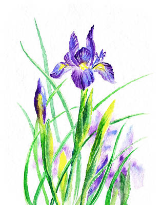Painting - Iris Flowers Botanical  by Irina Sztukowski