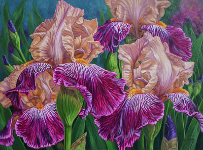 Bearded Iris Painting - Iris Garden 2 by Fiona Craig