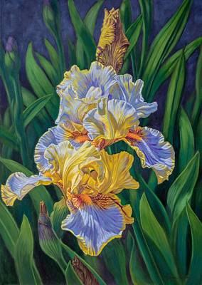 Iris Garden 3 Original