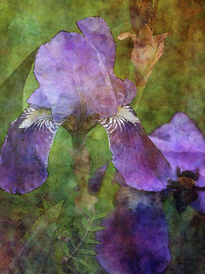 Grimm Fairy Tales - Iris Garden and Bee 9911 IDP_2 by Steven Ward