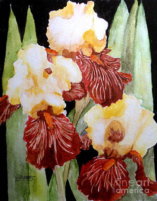 Painting - Iris Gems Of Garden by Carol Grimes