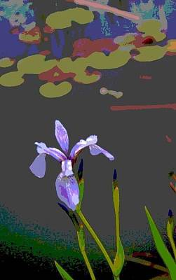Photograph - Iris  by Gini Moore