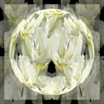 Digital Art - Iris Globe On Layers by Barbara St Jean
