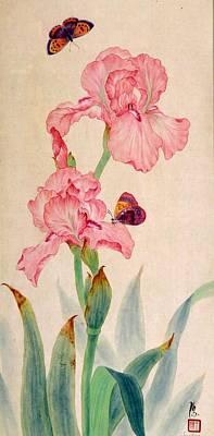 Iris IIi Art Print by Ying Wong