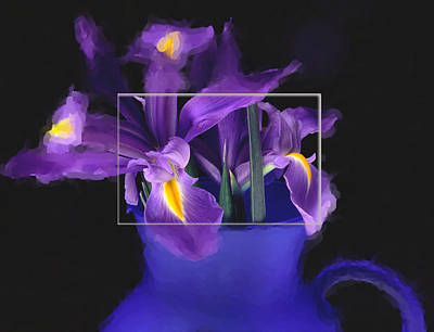 Iris In Blue Picture Art Print by Daniel D Miller
