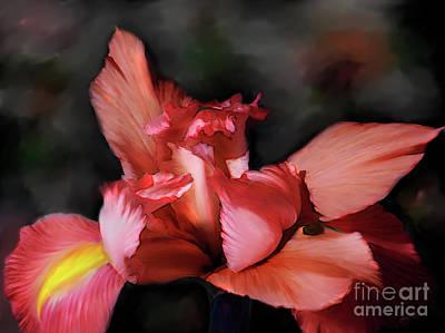 Digital Art - Iris In Orange by Lisa Redfern