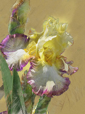 Digital Art - Iris, 'kiss Of Kisses' by Mark Mille