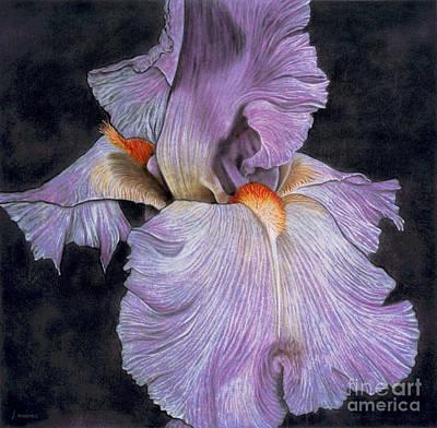 Iris Original by Lawrence Supino