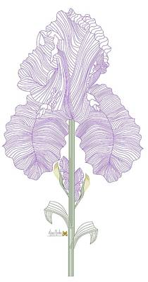 Painting - Iris Line Drawing Two by Anne Norskog