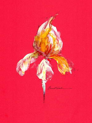 Wall Art - Painting - Iris Love by Alexis Bonavitacola