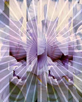 Digital Art - Iris Nova by Robert Kernodle