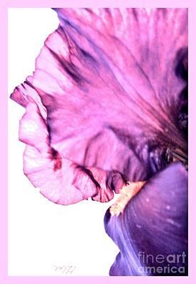 Shower Digital Art - Iris Petal Close Up by Marsha Heiken