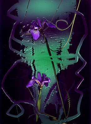Iris Reflections Art Print by Algis Kemezys