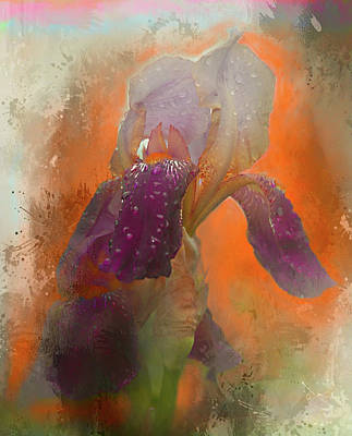Digital Art - Iris Resubmit by Jeff Burgess
