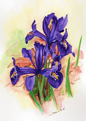 Painting - Iris Reticulata by Christopher Childs
