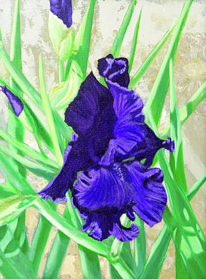 Painting - Iris Royalty by Vicki VanDeBerghe