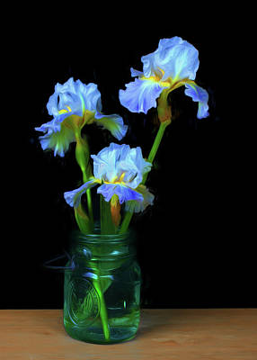 Photograph - Iris - Simply by Nikolyn McDonald
