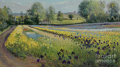 Birght Painting - Iris Slope by Timothy Easton