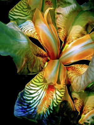 Mixed Media - Iris Splendor 7 by Lynda Lehmann