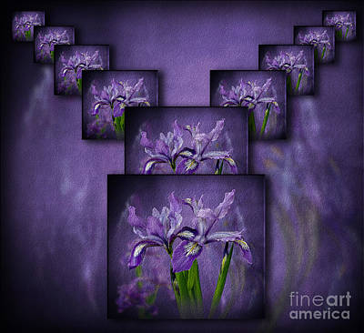 Photograph - Iris Stack by Shirley Mangini