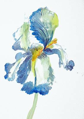 Iris Art Print by Tina Storey