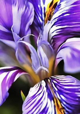 Painting -  Iris by Tracey Harrington-Simpson