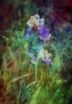 Irises 6618 Idp_3 Art Print