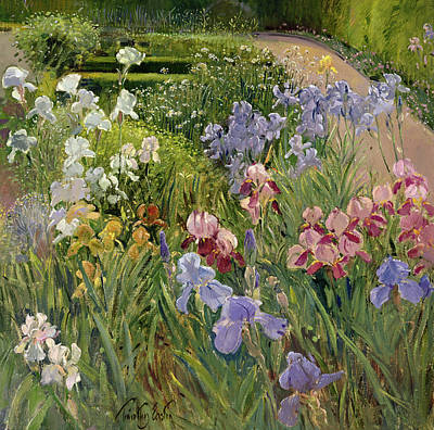Flora Painting - Irises At Bedfield by Timothy Easton