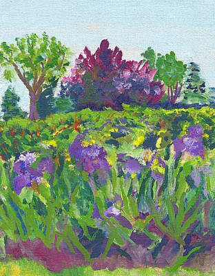 Painting - Irises At The Rose Garden by Paul Thompson