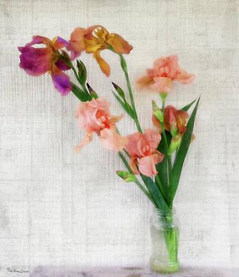 Photograph - Irises Beauty by Anna Louise