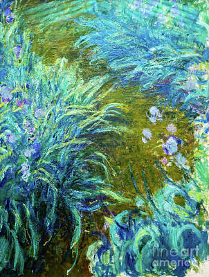 Painting - Irises By Monet by Claude Monet