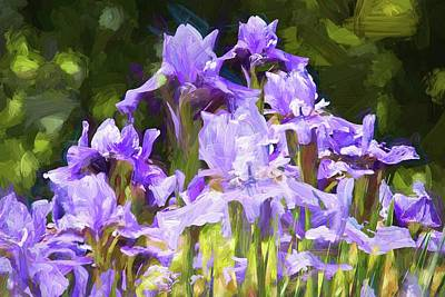 Photograph - Irises For Mama by Alice Gipson