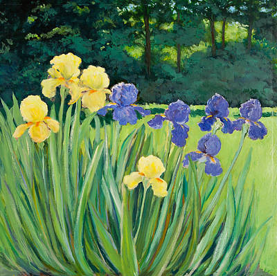 Irises In The Garden Art Print by Betty McGlamery