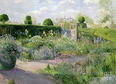 Irises In The Herb Garden Art Print by Timothy Easton