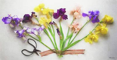 Photograph - Irises Splay by Anna Louise