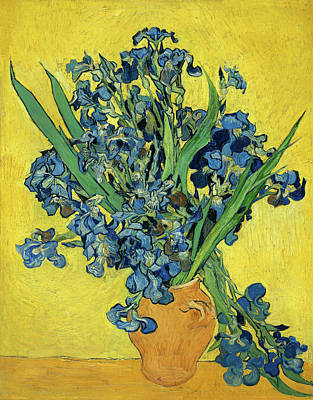 Painting - Irises Van Gogh 1890 by Vincent Van Gogh