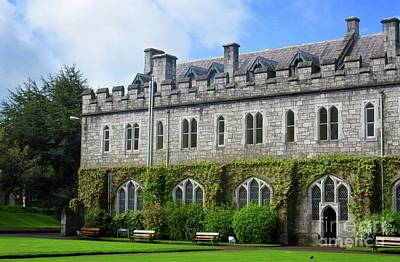 Photograph - Irish Architecture 3 by Crystal Rosene